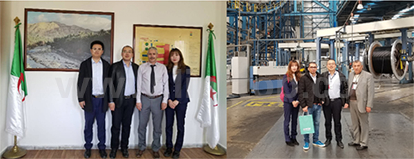 Lint Top Visit Algeria customers